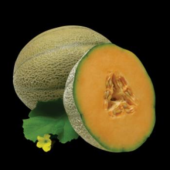 Табак Fumari – Ambrosia (Дыня)  100 гр.