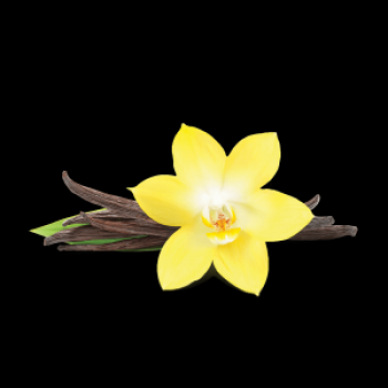 Табак Fumari – French Vanilla (Французская ваниль)  100 гр.