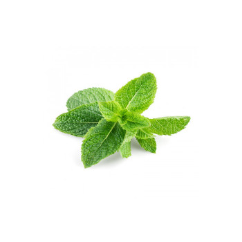 Табак Tangiers 100 г - BIRQUQ Cane Mint (Тростниковая мята)