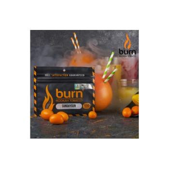 Табак для кальяна Burn SundaySun (Цитрусовый микс) 20г