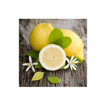 Табак для кальяна Tangiers NOIR Lemon Blossom (Цветение Лимона) 250г